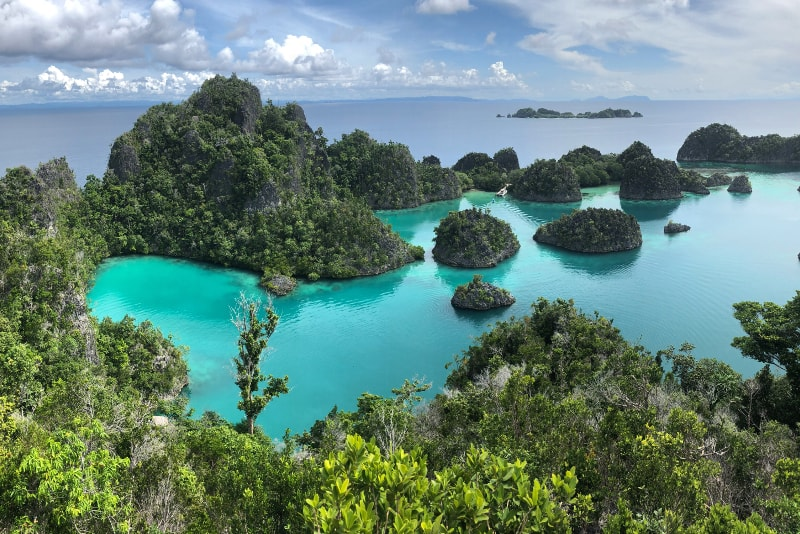 Raja Ampat islands - paradise islands you should visit