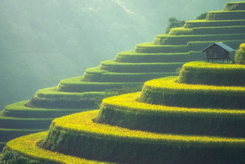 Île de Bali - Îles paradisiaques