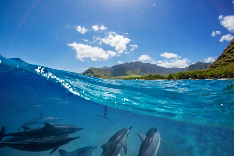 Île de la Reunion - Îles paradisiaques
