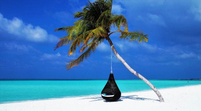 Îles paradisiaques à visiter
