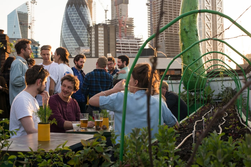 Culpeper - London - Best rooftops bars in the world