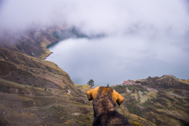 Dog Quilotoa Loop - Hiking Trails