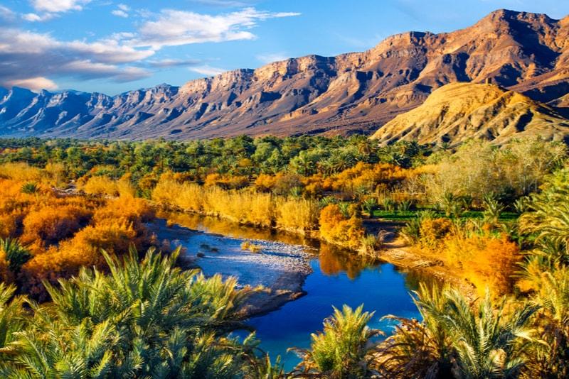 Jebel Saghro Oasis - 14 Treks Sensationnels dont vous n'avez Sûrement Jamais Entendu Parler