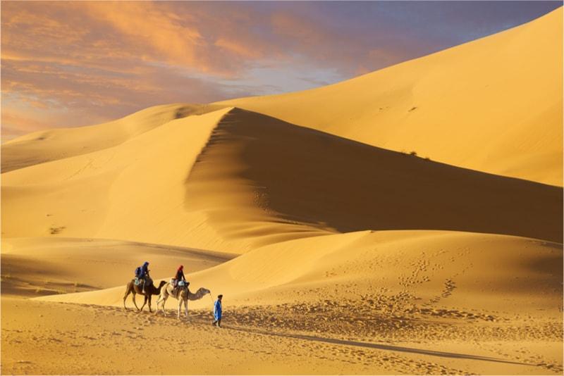 Sahara - 14 Treks Sensationnels dont vous n'avez Sûrement Jamais Entendu Parler