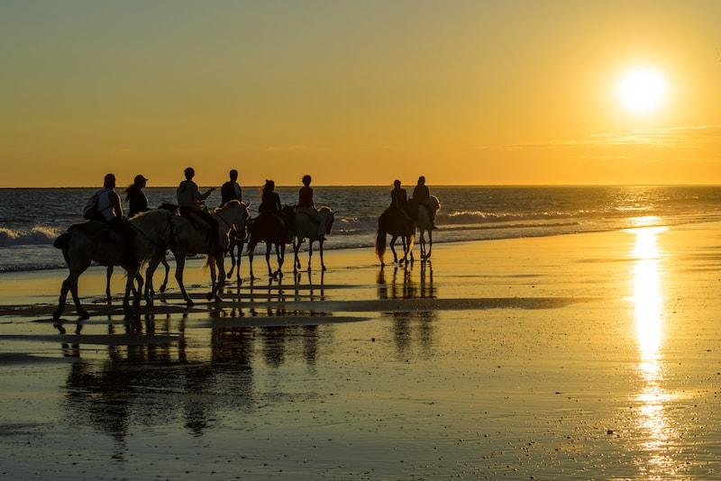 Riding horses at Mornington Peninsula - Fun things to do in Australia