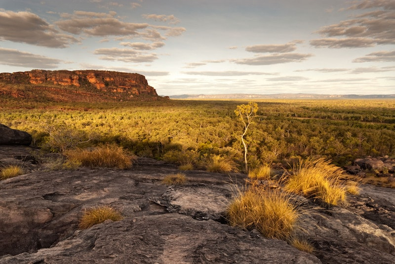 Kakadu National Park - Fun things to do in Australia