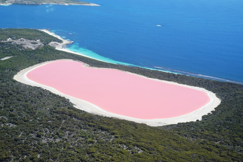 Visit Middle Island and discover the pink Lake Hillier - Fun things to do in Australia
