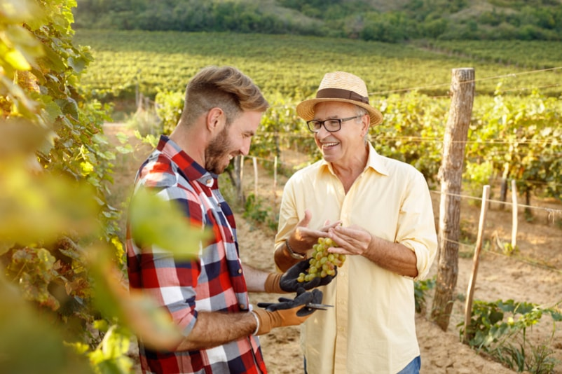Wine tour in Barcelona - things to do in Barcelona