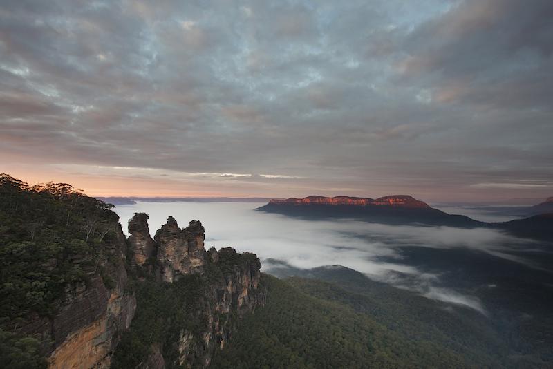 Le parc national des montagnes bleues - Que faire en Australie