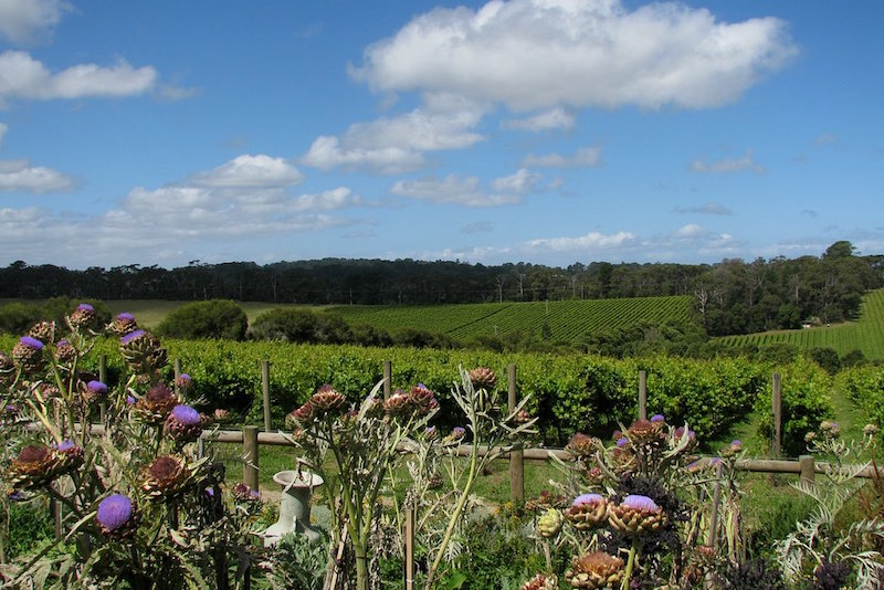 Mornington Peninsula - Que faire en Australie