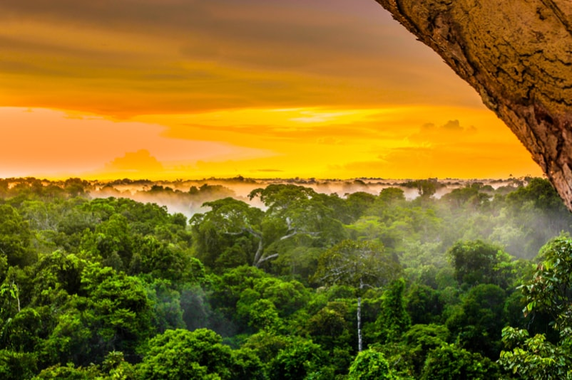 Amazon rainforest and River - The Ultimate Travel Bucket List – 100 Best Things to Do