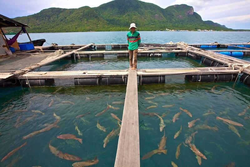 Con Dao - isole in Asia