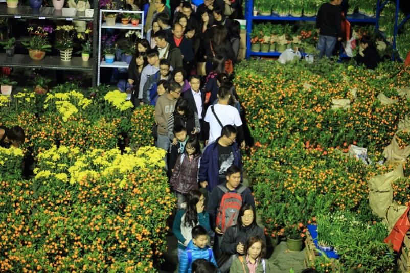 Mercado de flores - Coisas para fazer em Hong Kong