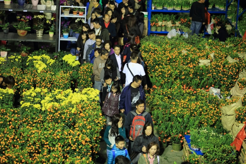 Flower market - things to do in Hong Kong