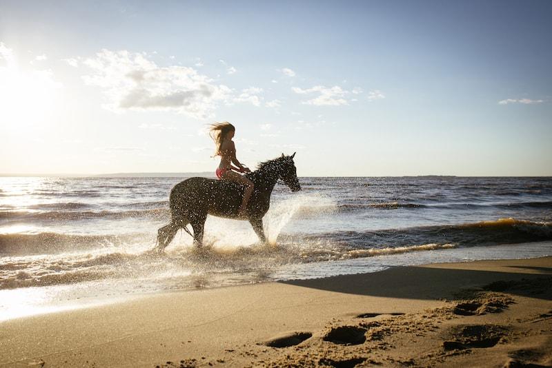 à cheval sur la Mornington Peninsula - Que faire en Australie