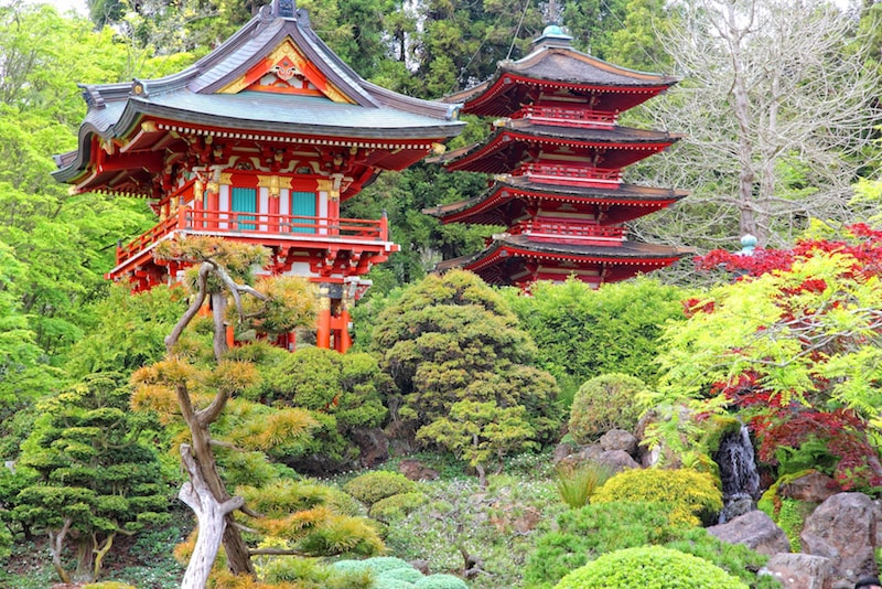 Le Japanese Tea Garden - Choses à faire à San Francisco