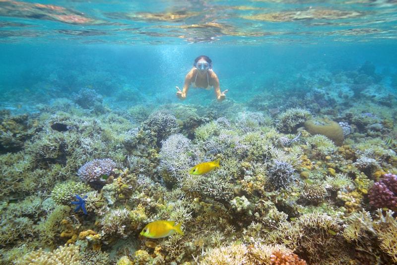 Jomalig - isole in Asia