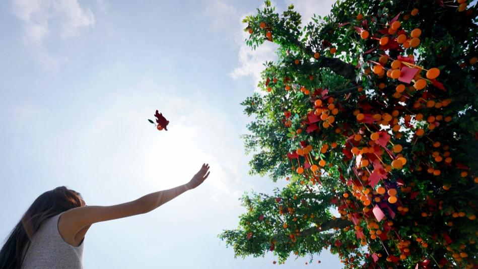 Árvore dos desejos - Coisas para fazer em Hong Kong