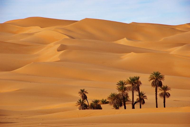 Deserto del Sahara - Lista dei Desideri