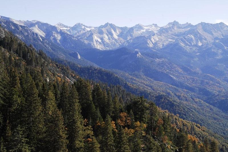 Parc National Sequoia - 100 bucket list