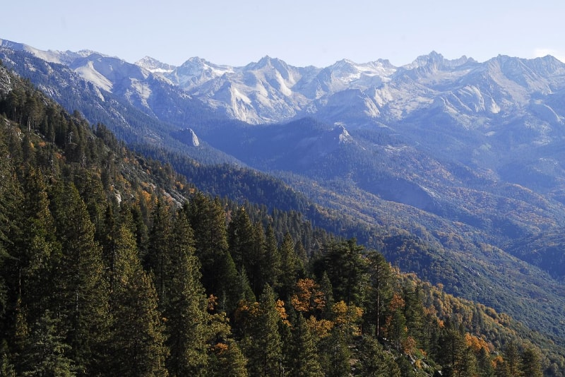 Sequoia National Park in California - Bucket List ideas
