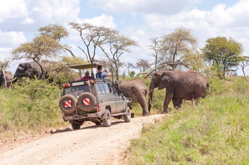 Serengeti national Park in Tanzania - Bucket List ideas