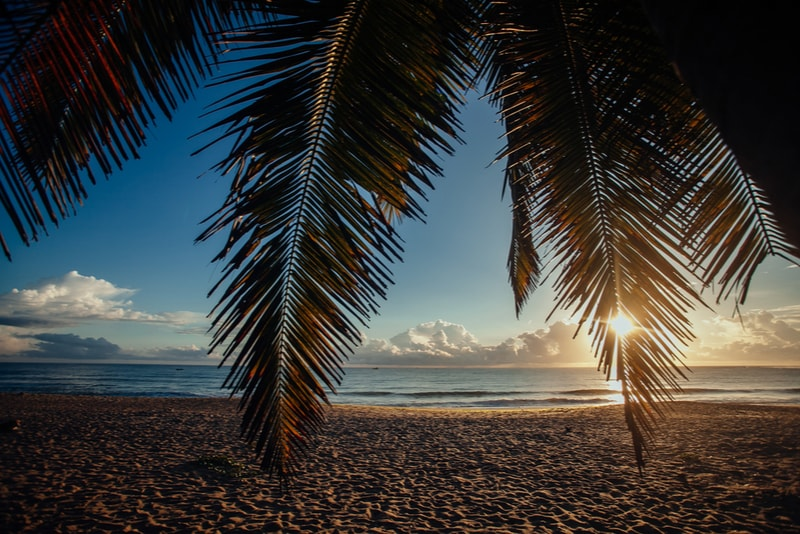 Arugam Bay Palm Sunrise - Places to Visit in Sri Lanka