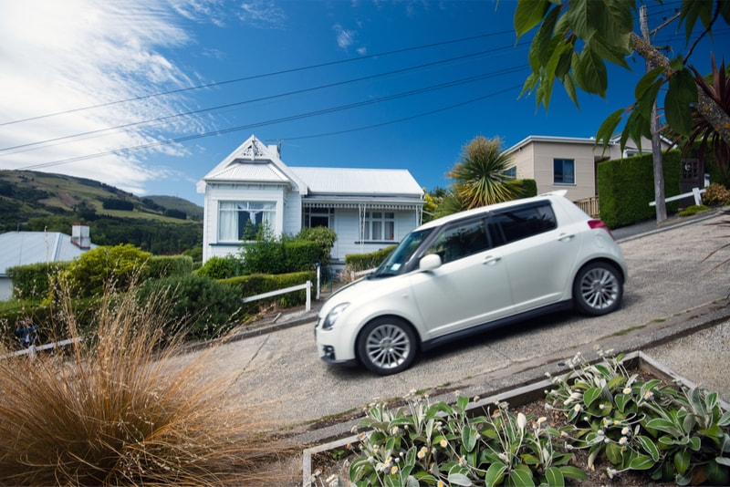 Baldwin street the steepest street - Fun things to do in New Zealand