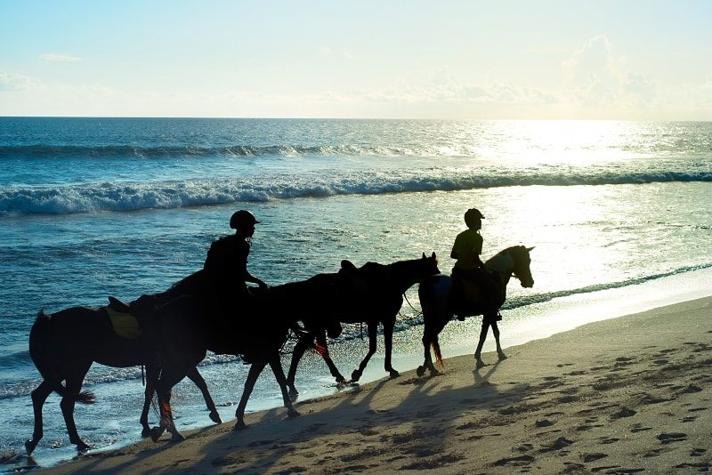 Equitazione a Canggu - Cose da fare a Bali