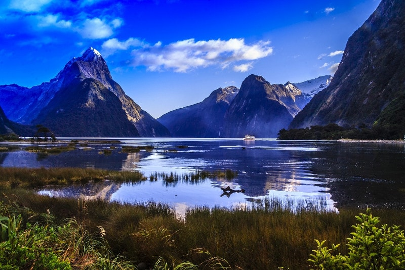Milford Sound - Fun things to do in New Zealand
