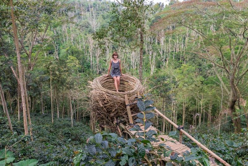 Ninho em Bali - coisas para fazer em bali
