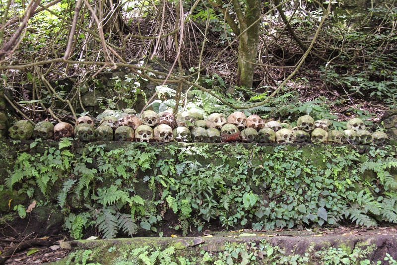Trunyan Cemetery - Fun things to do in Bali