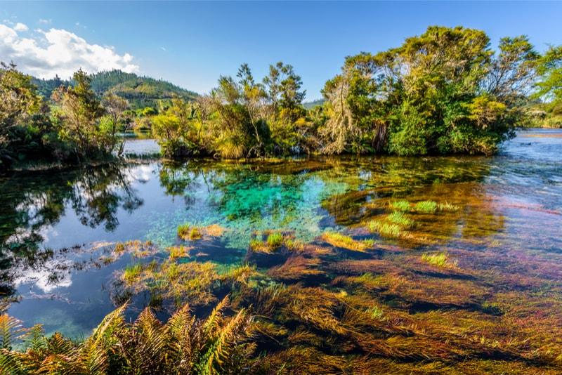 Te Waikoropupu Springs water - Fun things to do in New Zealand