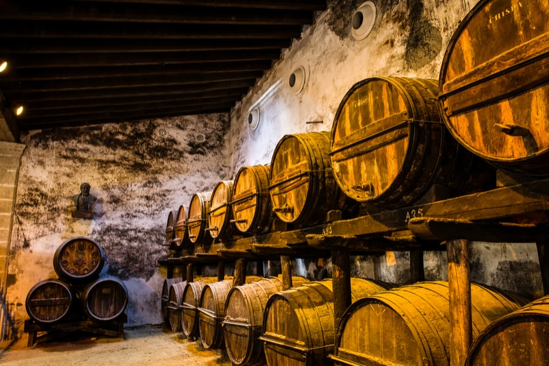 Wine Cellar Jerez - Things to Do Seville