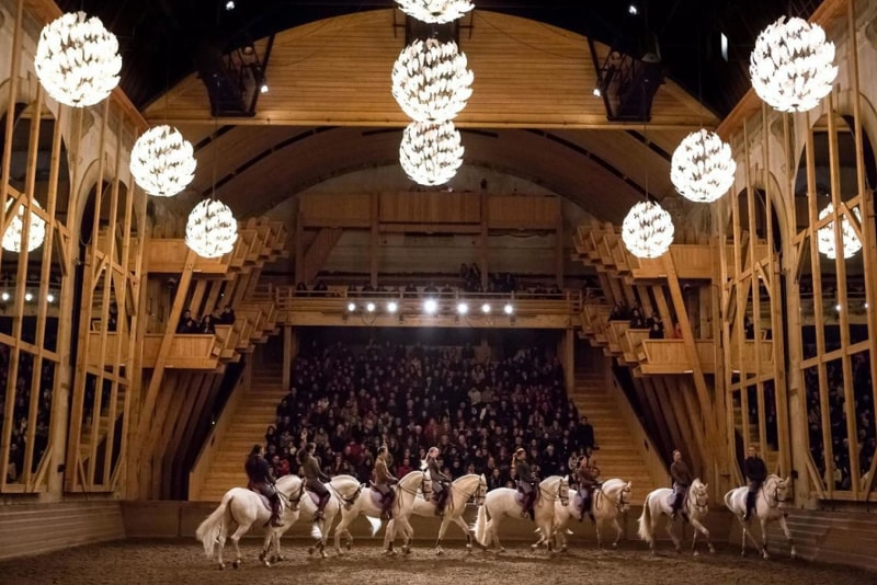 Equestrian show Versailles tickets