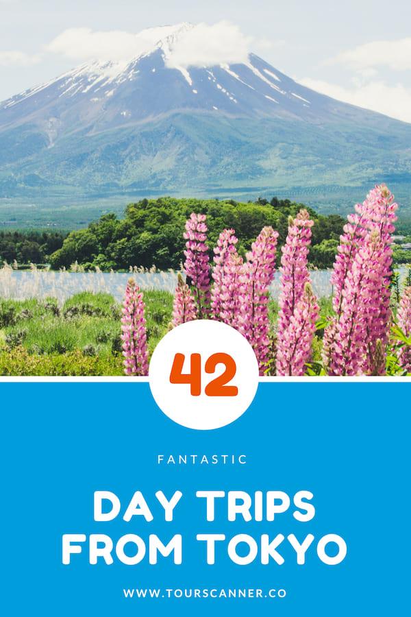 42 Viagens de um dia de Tóquio