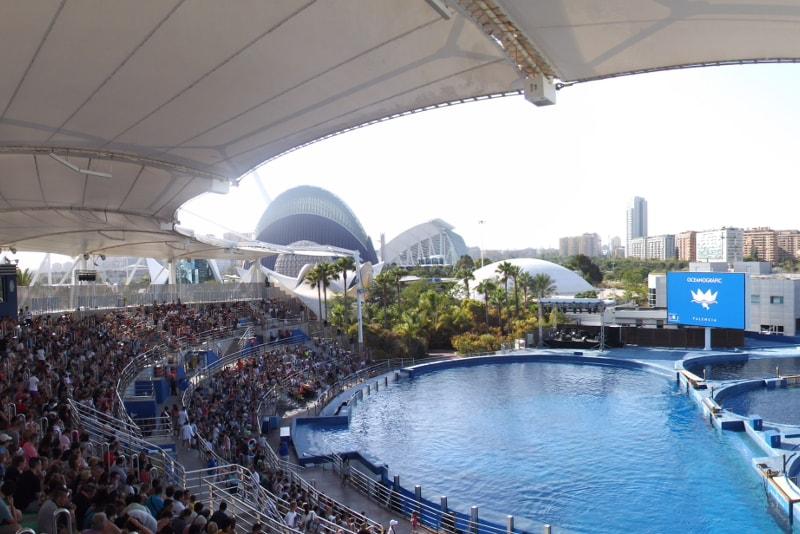 Ozeanografisches Valencia Delphinarium