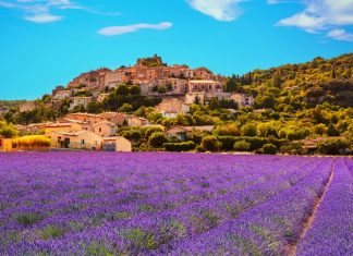 Day trips from Nice