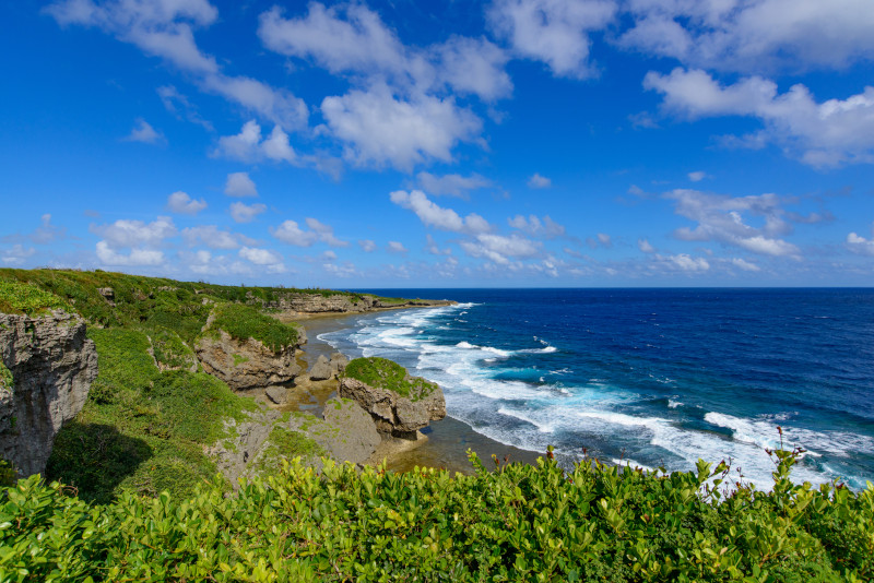 Jogashima day trips from Tokyo