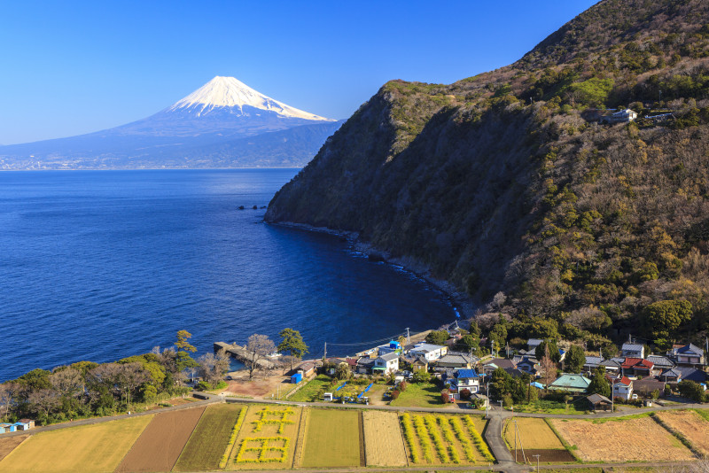 Suruga day trips from Tokyo