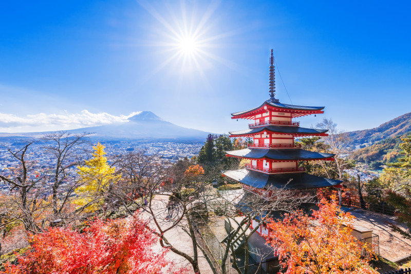 Yamanashi day trips from Tokyo