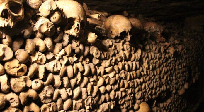 catacombs paris wall