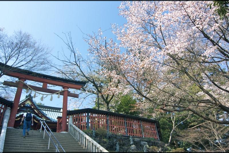 Monte Takao - Viagens de Tóquio