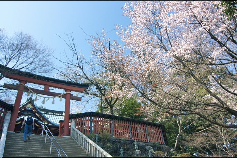 Mount Takao day trips from Tokyo