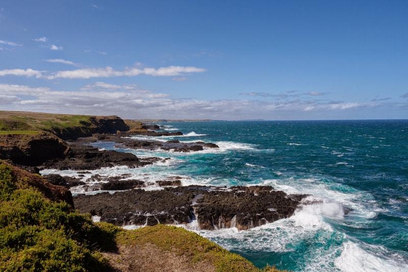 Book Phillip Island Tours