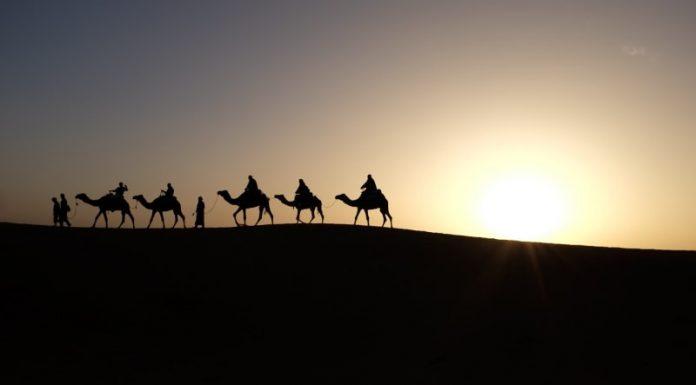 Things to do in the desert of Dubai