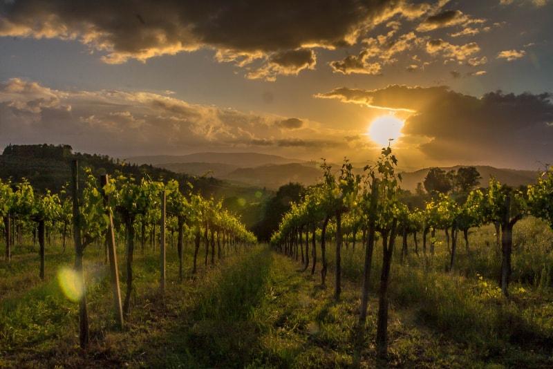 Chianti - Excursões por Vinícolas na Toscana