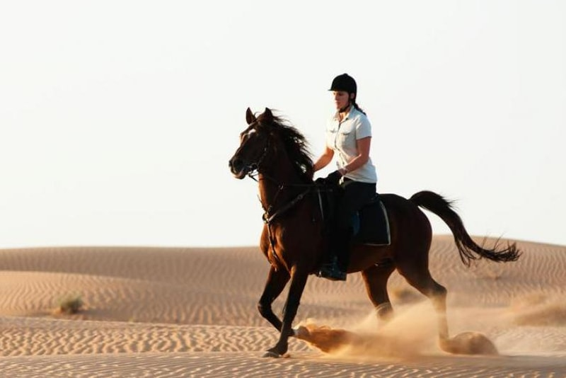 Horse riding safari in Dubai desert
