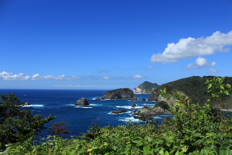 Izu Õ-shima excursion depuis Tokyo