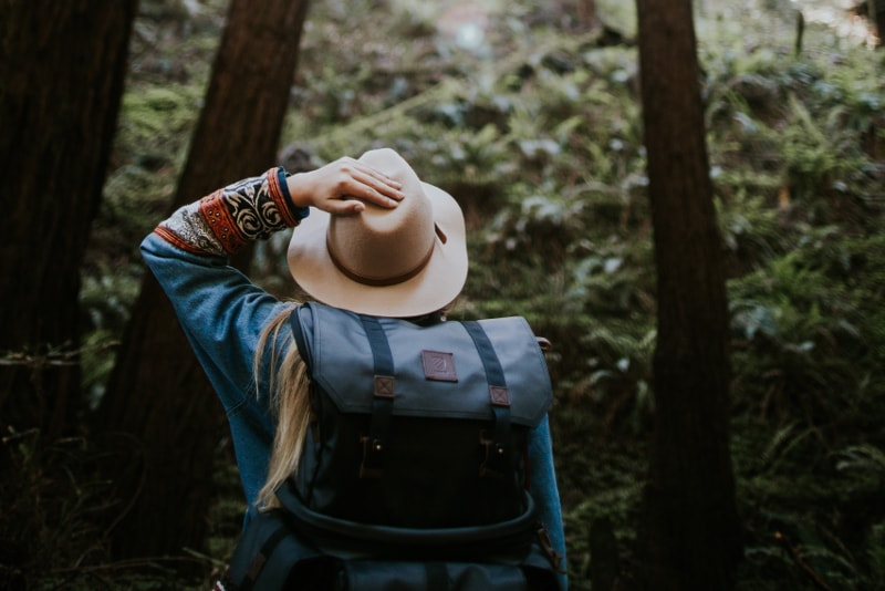 Muir Woods - What to do
